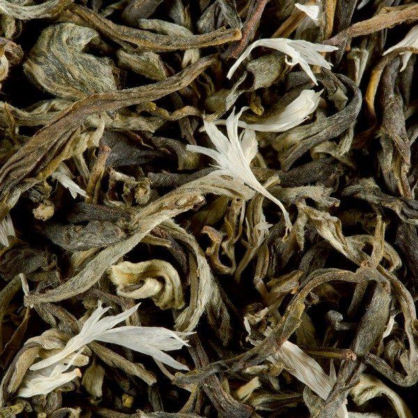 blanc myrtille thé blanc dammann